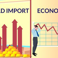 What is the Impact of Gold Import on Indian Economy?