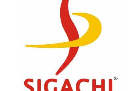 Sigachi Industries Ltd.